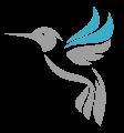 colibri-numetik